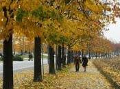 Colori d'autunno citta'