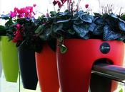 DESIGN gamba Greenbo, vaso fiori