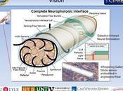 Amputazioni arti robotici: DARPA finanzia fibra ottica neurofotonica