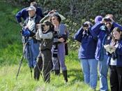 Cinque agriturismi birdwatching