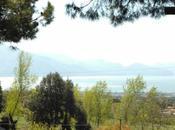 Easter Vesuvio
