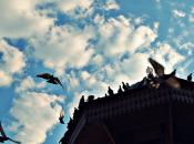 BOSNIA: Diverse memorie passato comune, stesso sogno futuro diverso