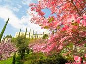 Idee Viaggio ponte Aprile: giardini Sissi