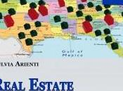 Ebook: Real Estate. Guida pratica agli investimenti immobiliari America.