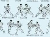 Tecniche parata karate