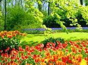 Tag: Primavera Estate
