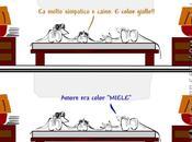 esiste gusto gatto?