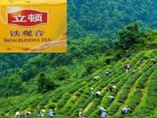 Greenpeace: pesticidi Lipton cinese