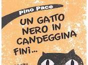 """gatto nero candeggina finì..."""" libro Haiku bambini italiani"""