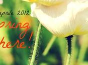 perla primavera