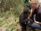 Foto giorno ottobre 2010 scimmia bacia charlize theron