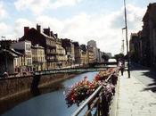 Rennes Montpellier dutching