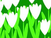 Spring Air!