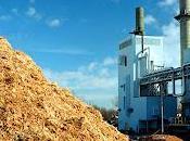 Sambuca Sicilia Santa Margherita Belice lavora progetto produrre biomassa
