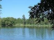 Parque Cedazo