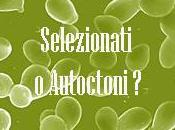 Lieviti selezionati lieviti autoctoni?