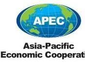 Asia-Pacific Economic Cooperation (Organismo cooperazione economica).