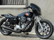 Harley Tramp