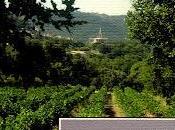 """Primavera Borgogna"" Luca Terenzoni: recensione blog Fenice Book""."