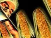 """OGM, ministro Catania: """"non sono risposta giusta"""""""