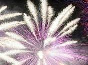 Caput Lucis 2012: campionato mondiale fuochi d'artificio