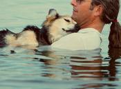 Schroep, cane malato addormenta cullato nell'acqua