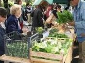 "Emilia Romagna ""Mercolbio"" mercato ecologico Imola (Bo)"
