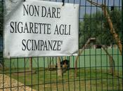 Italia: quasi tutti fuorilegge