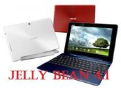 Jelly Bean anche Asus Transformer TF300