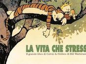 Calvin Hobbes vita stress