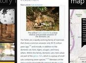 Wikipedia l'Enciclopedia arriva Nokia Lumia 900, 800,
