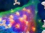 Sogno Alieno: l'Enigma degli Arconti