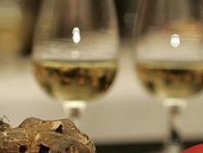 Fiera Tartufo Acqualagna. brindisi vini marchigiani