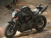 MT01 Blackbull