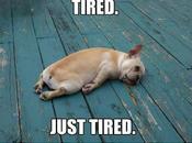 sono stanca