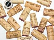 Tasting lagrein: fiera bolzano fascino vitigno gries