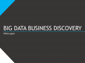 Data Business Discovery white paper sulla nuova infocube-less