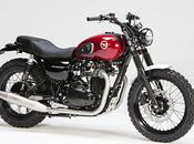 Kawasaki W800 Days 2012