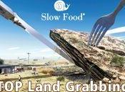 Land Grabbing, nuova forma colonialismo?