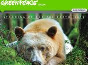 Calendario GREENPEACE 2013