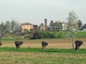 censimento luoghi italiani amati