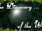 Discovery Week n°11