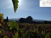 Autumn leaves. Tenuta Fessina