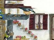 balcone aperto canti, colori, alla natura: novembre 2010 Andreis (Pn)