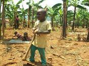 Tanzania Punti deboli società crescita /Necessita attrezzarsi