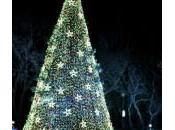 Barack Michelle Obama accendono l'albero Natale
