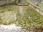 strano giro dell'acqua Cassino