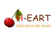 Acquistare Stiletico: intimo ecologico H-earth