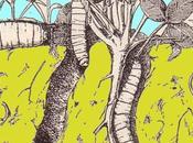 Test: ilmio terreno infestato dagli insetti terricoli?