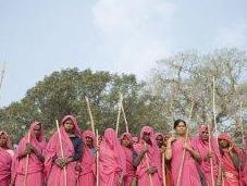 Sari rosa, democrazia importare